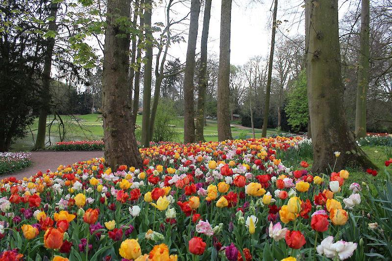 Floralia Brussels - Gallery | Kasteel van Groot-Bijgaarden ...